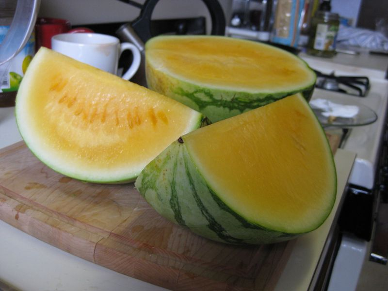Orange_watermelon