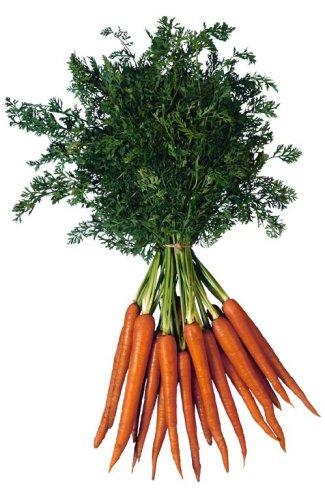Carrots_tallthin