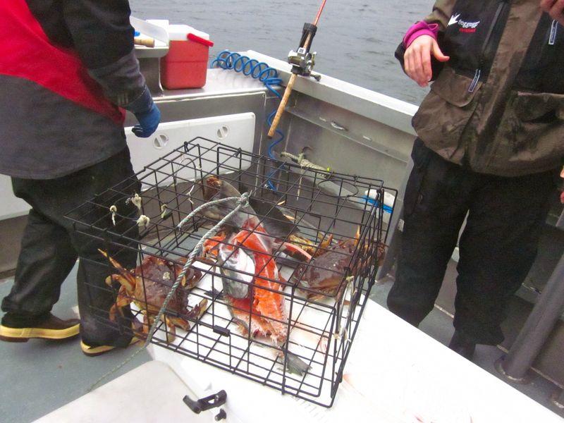 Alaska_Crabbing